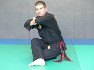 TOA TAN: position de la garde basse