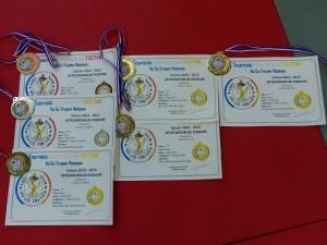 Vo co truyen 2015 - 15 médailles
